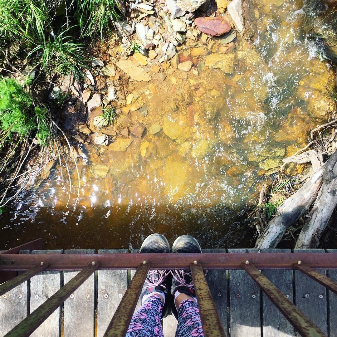 Cobbler Creek