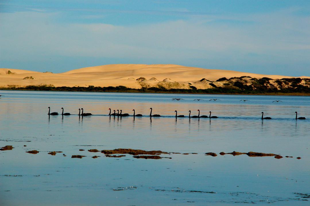 aboriginal-heritage-parks-body5.jpg