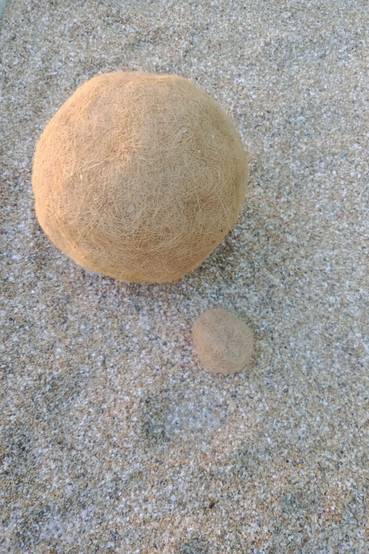 beachcombing-body11.jpg