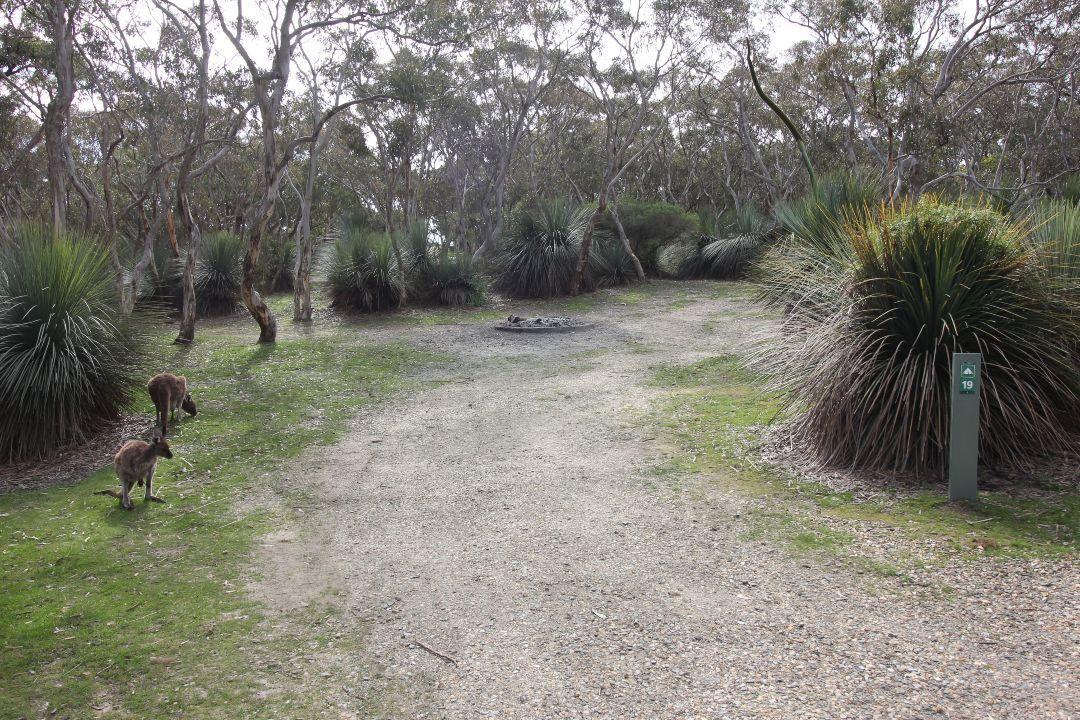 camping-guide-deep-creek-body2.jpg