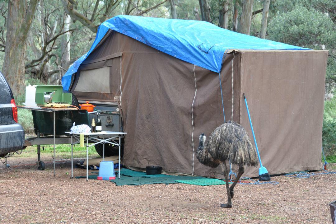 camping-safely-body5.jpg