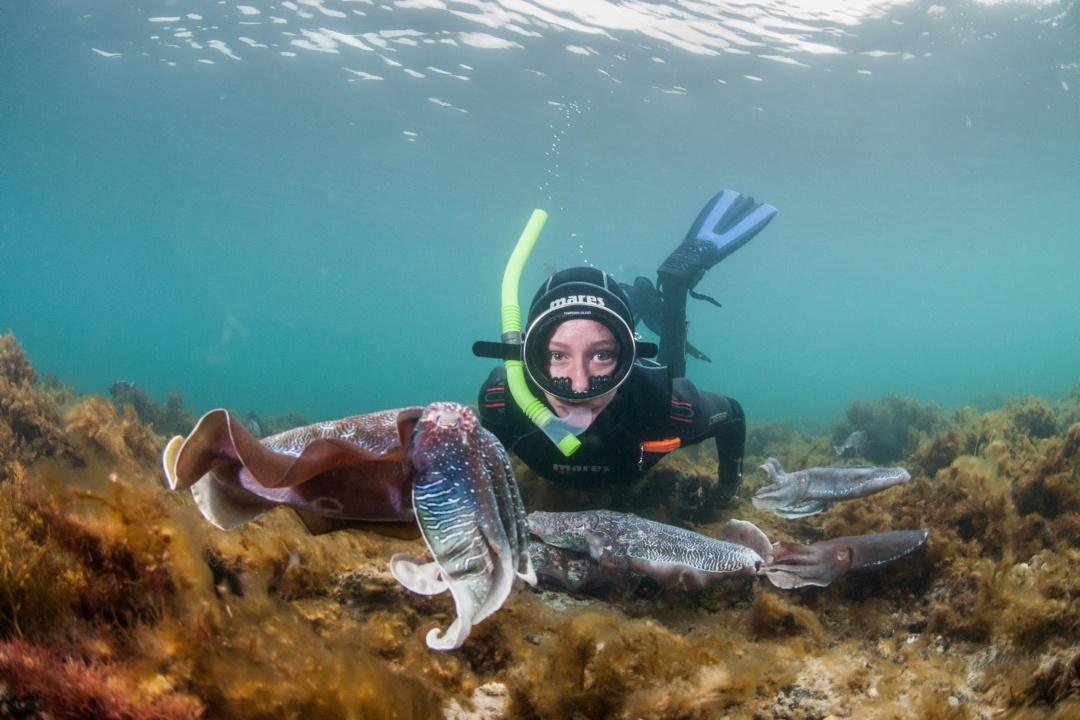experiences-in-south-australias-national-parks-body22-spencer-gulf.jpg