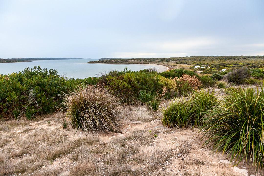 limestone-coast-parks-body1.jpg