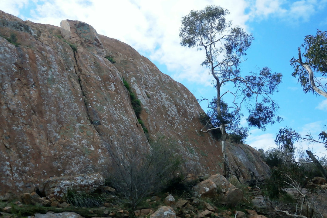 limestone-coast-parks-body2.jpg