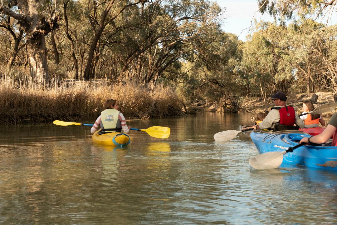 ranger-tips-murray-river-body2.jpg