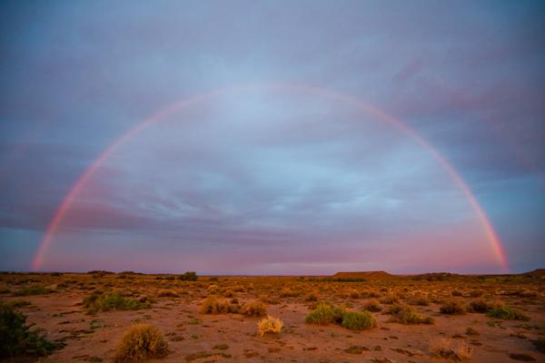Witjira rainbow