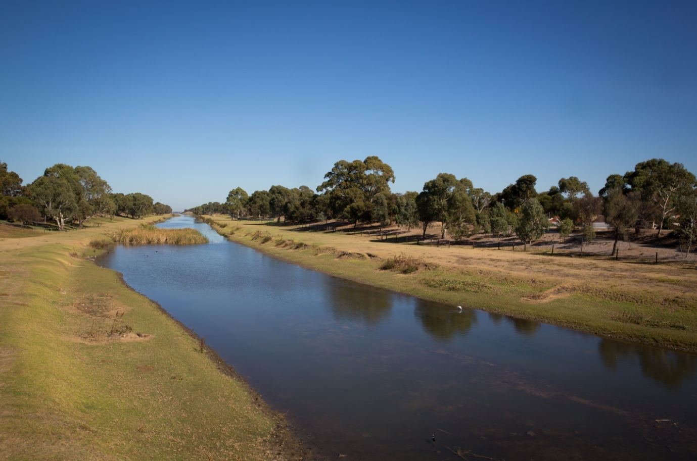 River Torrens Breakout Creek Stage 3 - Green Adelaide