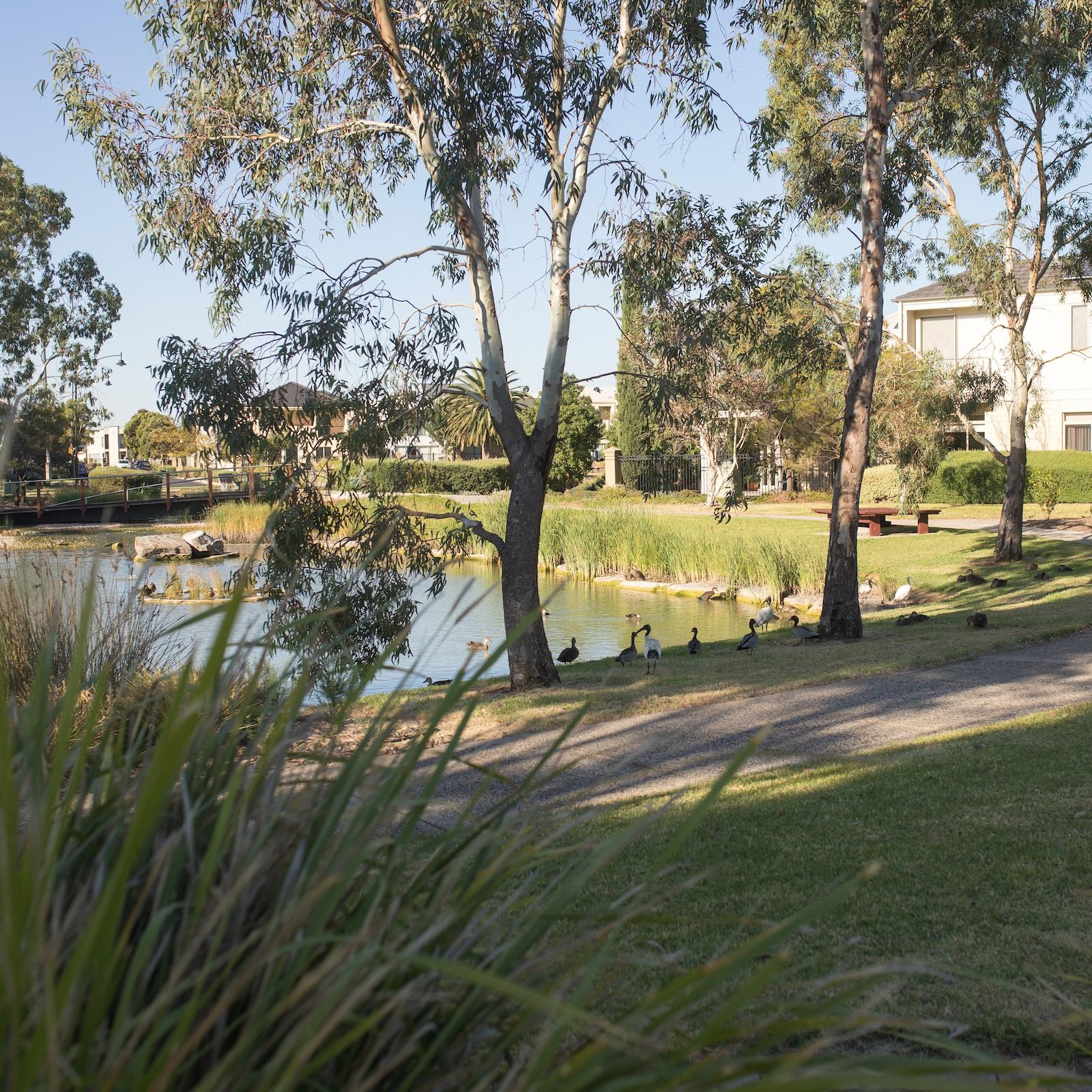 Greener Neighbourhoods Grants - Green Adelaide
