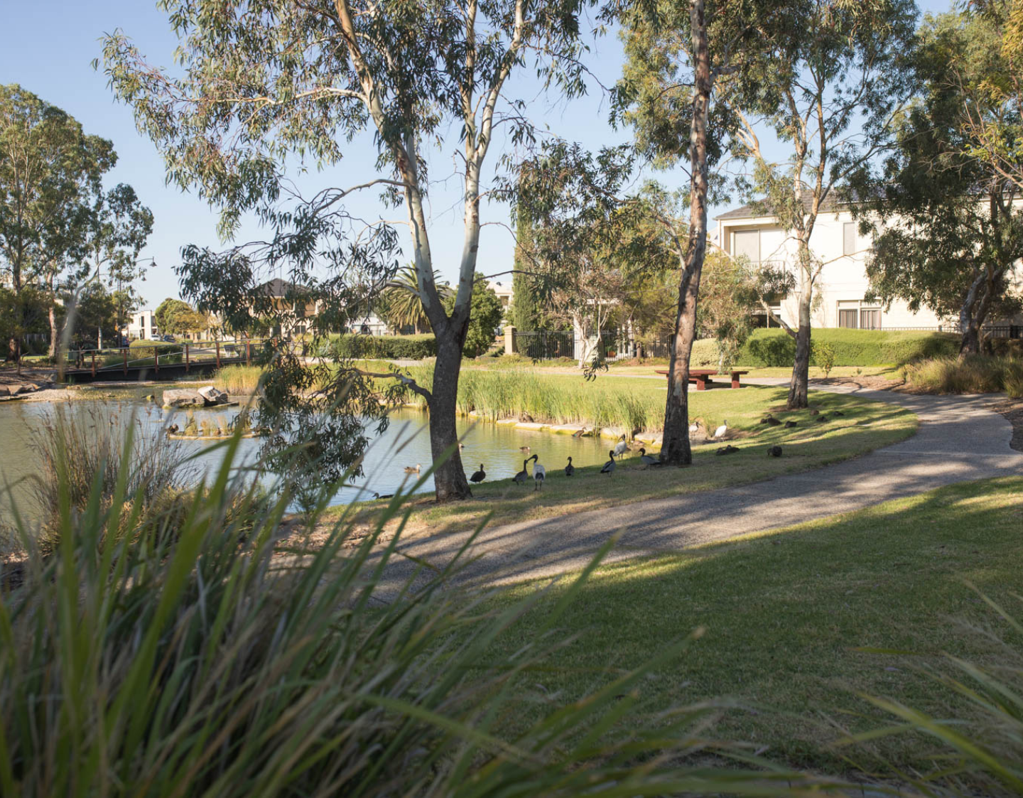 APPLY FOR A WATER PERMIT - Green Adelaide