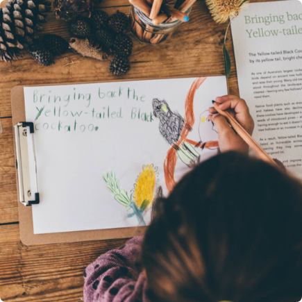 Connecting with the natural world from a young age brings about many developmental, health and social benefits. It can also nurture an instinctive desire to do more to protect the natural environment and the native plants and animals within it.