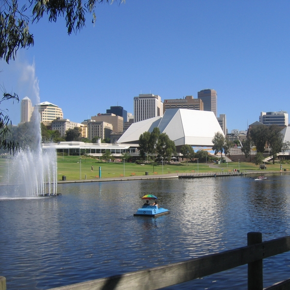 Despite being an important community asset and tourism icon for Adelaide, the Torrens Lake suffers from frequent and repeated blue-green algae (cyanobacteria) blooms.  These microscopic blue-green algae are naturally occurring, but can reach high concentrations (or 'bloom') in situations where warm temperatures, stagnant water and high nutrient levels combine.